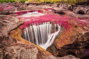 Kỳ lạ dòng sông xanh, đỏ sặc sỡ nhất thế giới ở Colombia