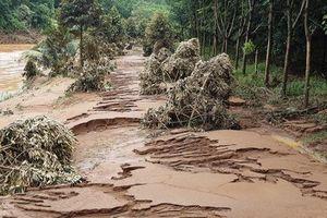 Nhiều khu vực tỉnh Bình Phước thiệt hại hơn 7 tỷ đồng do mưa lũ