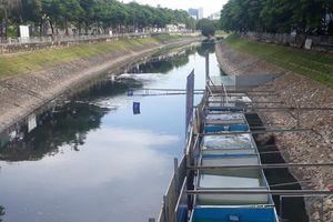Chuyên gia Nhật tắm ở sông Tô Lịch, người dân Hà Nội bày tỏ vui mừng