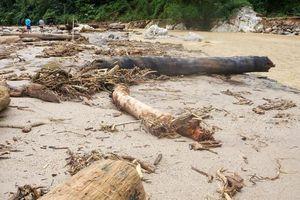 Cơn lũ cuốn 15 người có thể do suối bị chặn dòng chảy