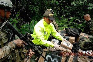 Nam Mỹ đương đầu với các đường dây ma túy xuyên quốc gia