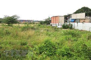 Vĩnh Phúc: Xem xét, xử lý trách nhiệm Chủ tịch UBND huyện, xã buông lỏng quản lý đất đai