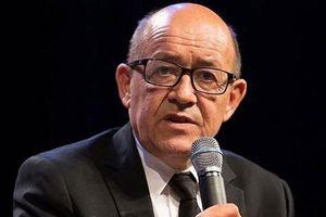 Hồ sơ Interpol: Ly kỳ vụ giả bộ trưởng Pháp lừa hàng nghìn tỷ của các đại gia