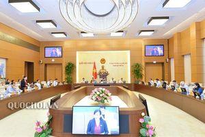Dự kiến chương trình phiên họp thứ 36 của UBTV Quốc hội