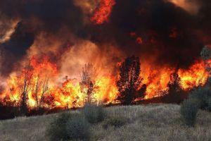 Thấy gì từ vụ cháy rừng kinh hoàng ở Nga?