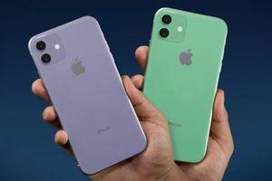 Vì sao Apple chỉ nên ra một chiếc iPhone trong năm 2019?
