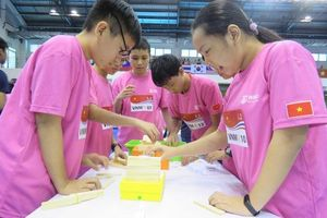 12 học sinh Việt Nam đoạt giải cuộc thi toán học WMO
