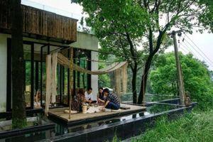 'Biệt phủ' giữa rừng đẹp như mơ của một nữ biên tập viên Trung Quốc