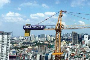 Vinaconex sau nửa năm 'thay áo'
