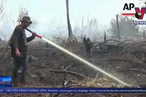 Cảnh báo nguy cơ cháy rừng tại Đông Nam Á