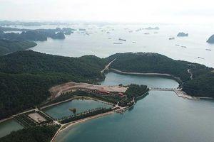 Thêm một 'biệt khu' trái phép ở vịnh Bái Tử Long