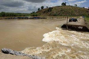 Vỡ đê khiến hơn 1.000 ha lúa bị ngập nặng ở Đắk Lắk