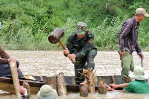 Vỡ đê bao ở Đắk Lắk, người dân thiệt hại thế nào?