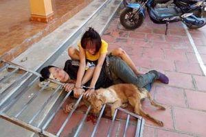Vừa bị xử phạt vì ăn trộm chó, đôi tình nhân lại hành nghề và tiếp tục bị bắt