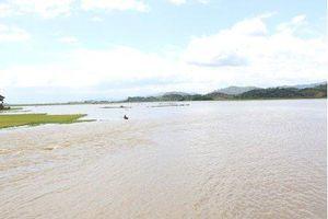 Đắk Lắk: Vỡ đê bao khiến hơn 1.000ha lúa sắp thu hoạch chìm trong biển nước