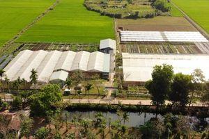 Quảng Nam: Hỗ trợ, xây dựng Hệ sinh thái khởi nghiệp đổi mới sáng tạo trên địa bàn