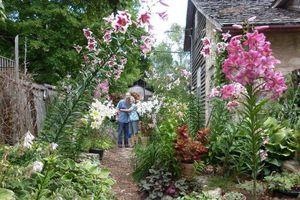 Khu vườn ngọt ngào đầy hoa lá và cây trái của ông bà cụ quyết rời căn hộ thành phố về quê sinh sống