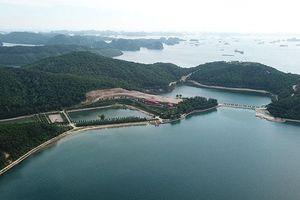 Thêm một đại công trường xây dựng trái phép trên vịnh Bái Tử Long, Quảng Ninh
