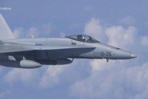Vì sao F-18 NATO dám 'vuốt mặt' chuyên cơ Bộ trưởng Quốc phòng Nga?