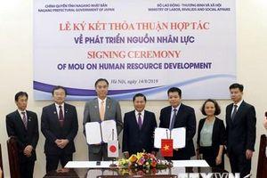 Thêm cơ hội việc làm hấp dẫn tại Nhật Bản cho lao động Việt Nam