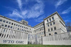Mỹ sẽ rút khỏi WTO?