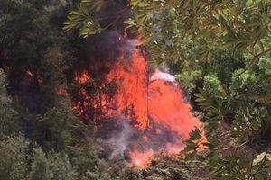 Nghi dân đốt vàng mã rằm tháng 7 gây cháy rừng ở Nghệ An