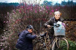 11 tác phẩm đoạt giải tại liên hoan ảnh 'Vẻ đẹp người Hà Nội'