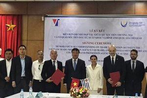Mở rộng hợp tác thương mại Việt Nam- Uruguay