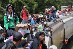 Mexico giải cứu hơn 46 nghìn người di cư khỏi bọn buôn người trong hơn tám tháng