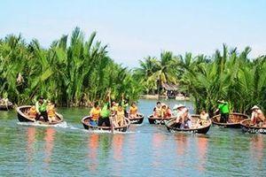 Xử lý nghiêm các trường hợp xâm hại rừng dừa Bảy Mẫu