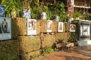 Ứa nước mắt viếng thú cưng tại ngôi chùa độc đáo ở Hà Nội