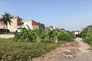 Quận Kiến An, TP Hải Phòng: Vụ đấu giá quyền sử dụng đất ở có những dấu hiệu bất thường