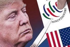 Thương mại toàn cầu đối mặt thách thức lớn nếu Mỹ rời WTO