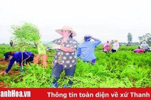Phát triển bền vững công nghiệp chế biến nông, lâm, thủy sản