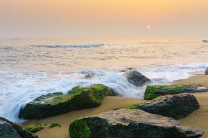 Việt Kiều Mỹ lặn lội dọc miền Trung tìm bằng được bãi biển sạch không một miếng rác