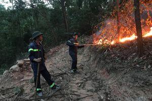 Cháy rừng đầu nguồn ở TP.Đà Nẵng, hơn 200 người dập lửa nhiều giờ