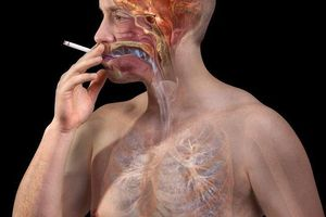 Thay vì hút thuốc lá vào sáng sớm, hãy uống ly nước ấm