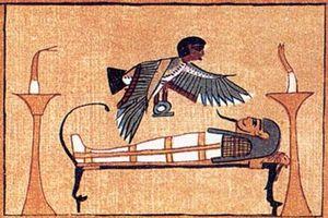 Lời giải chấn động về sự tồn tại của linh hồn bất tử