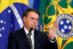 YouTube đã 'cực đoan hóa' Brazil thế nào bằng vô số thuyết âm mưu