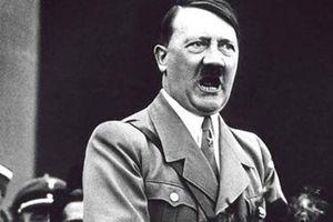 Vì sao trùm phát xít Hitler ghét cay ghét đắng loài ngựa?