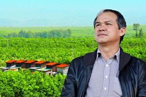 HNG tiếp tục bán đứt công ty con cho Thadi của tỷ phú Trần Bá Dương