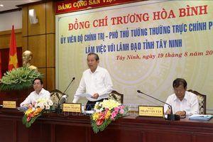 Phó Thủ tướng Trương Hòa Bình làm việc với lãnh đạo tỉnh Tây Ninh