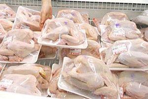 Hơn 62.000 tấn thịt gà đông lạnh siêu rẻ từ Mỹ nhập về Việt Nam
