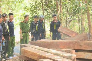Đắk Lắk: Trưởng thôn phá rừng thuê nhận 300.000 đồng/ngày