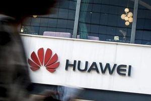Tạm dừng cấm Huawei không phải vì ông Trump thua