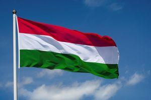 Lãnh đạo Đảng, Nhà nước gửi điện mừng Quốc khánh Hungary