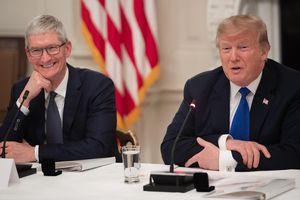 Sợ Apple thua Samsung, CEO Tim Cook 'cầu cứu' Tổng thống Trump