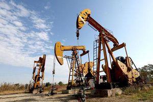 Giá xăng, dầu (20/8): Duy trì đà tăng