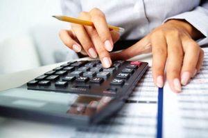Ninh Thuận: 58 DN nợ thuế trên 230 tỷ đồng