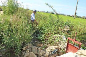 Quảng Nam: Kênh mương xuống cấp, ruộng đồng 'khát'